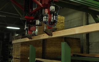 Paletten Souvereyns - Diepenbeek - Van boom tot plank